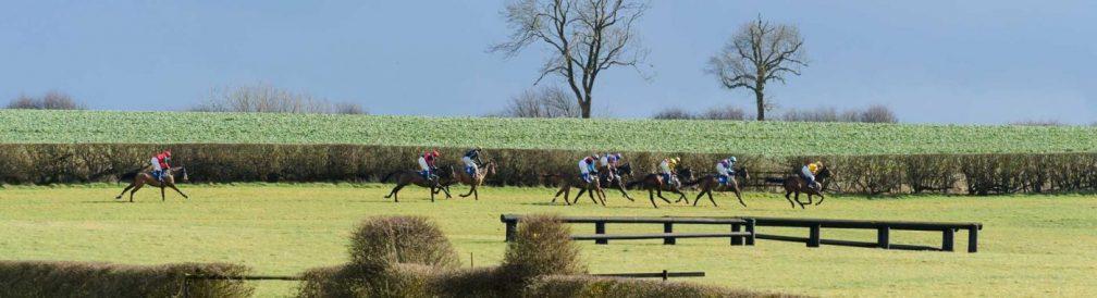 Horses on the back straight at Garthorpe